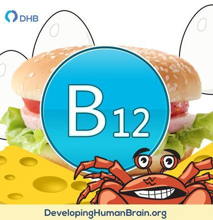 Vitamin B12 for brain and memory